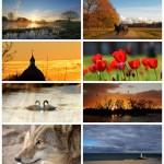 MCCS-PHOTOGRAPHY-LOGO